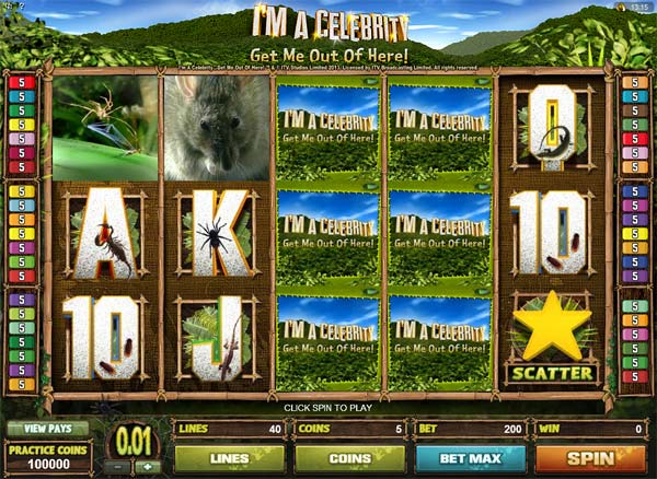 I'm a celebrity get me out of here video slot game